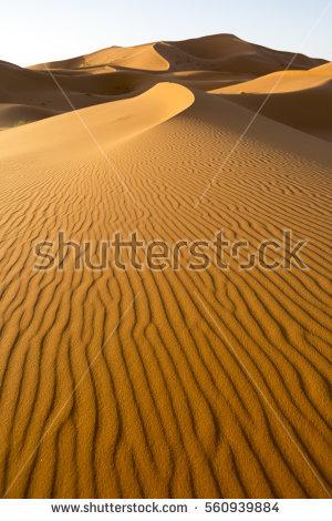 Dunes Stock Photos, Royalty.