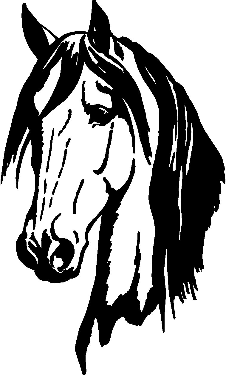 Got Cows Cutting Horse Vinyl Window Decal Car Stickers.