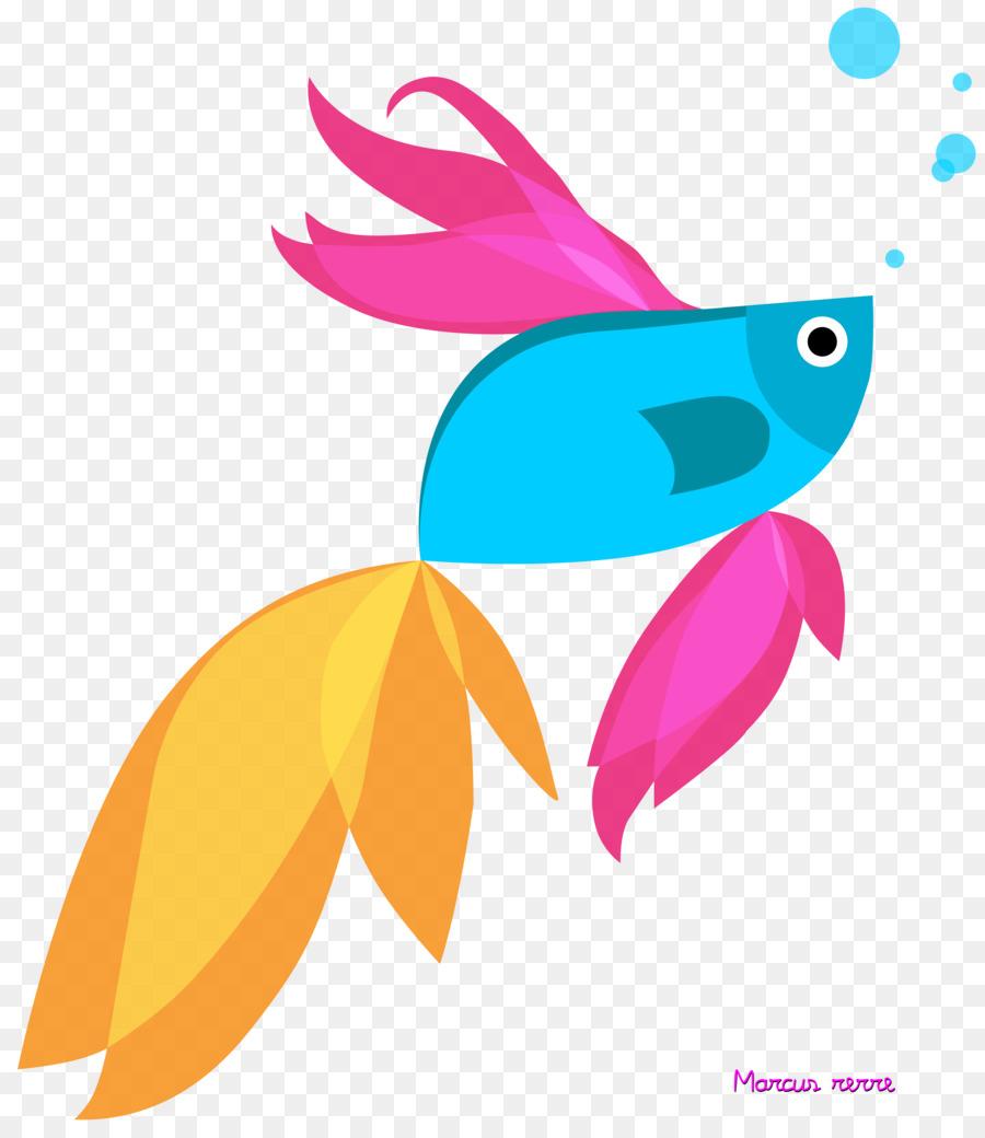 Siamese fighting fish Windows 8.1.