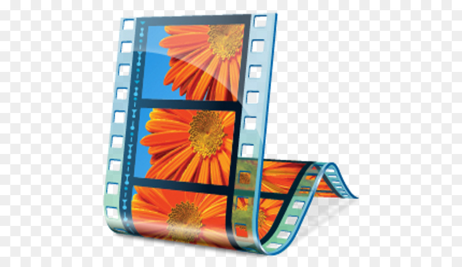 Orange Flower png download.
