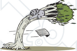 Clipart Illustration of a Koala Clinging To A Tree During A Wind.