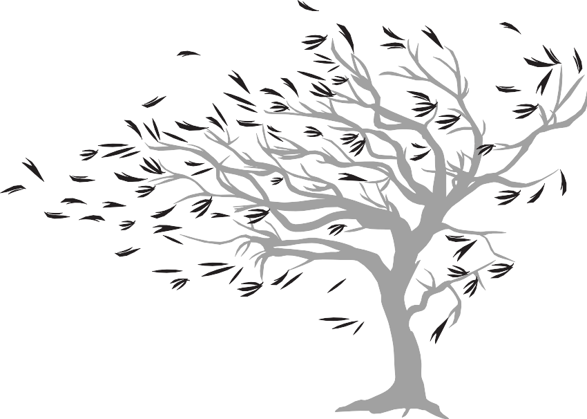 20 Windy clipart tree for free download on Premium art.
