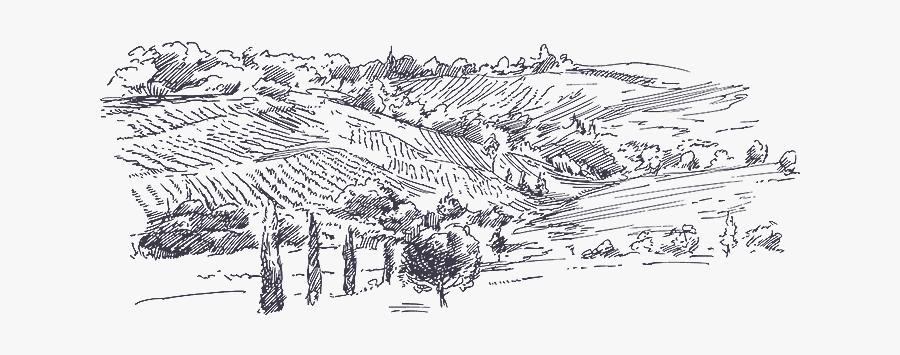 Picture Download Judean Montefiore Wines In.