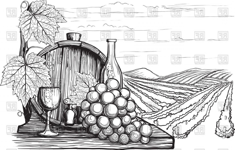 Winery Vector Art.