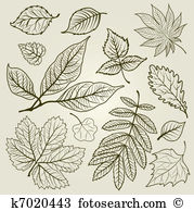 Wineberry Clip Art Vector Graphics. 4 wineberry EPS clipart vector.