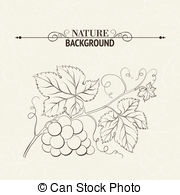 Wine berry Clipart and Stock Illustrations. 2,180 Wine berry.