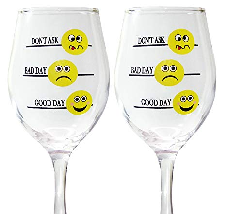 BANBERRY DESIGNS Funny Wine Glass Set.