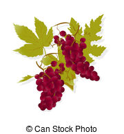 Wine grapes Clipart and Stock Illustrations. 13,522 Wine grapes.