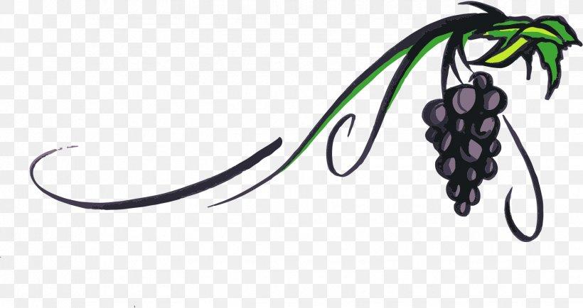 Piquepoul Wine Grape Vine Clip Art, PNG, 1735x919px.