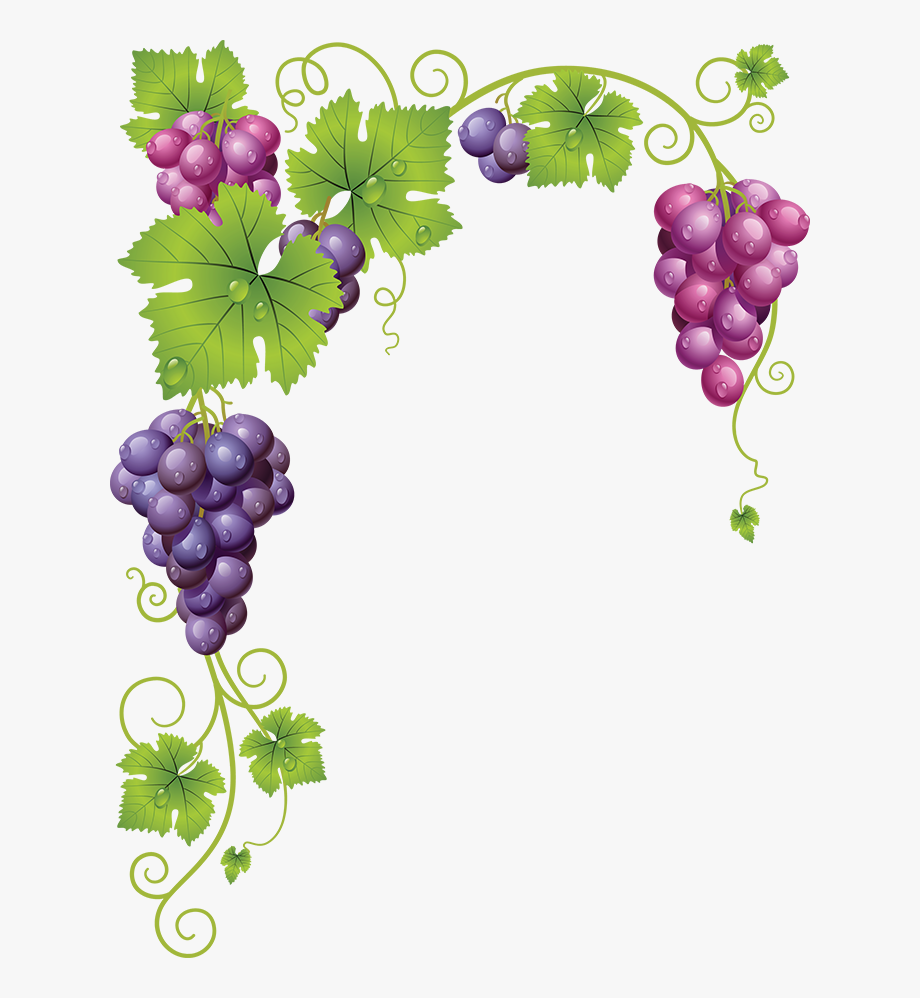 Common Grape Wine Clip Art Transprent Png.