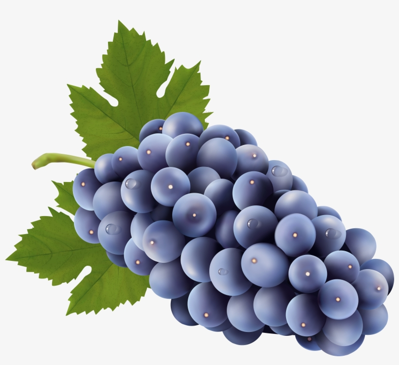 Transparent Background Grapes Clipart PNG Image.