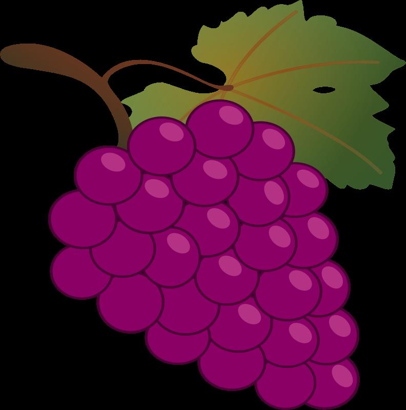 Free Clipart: Grape.