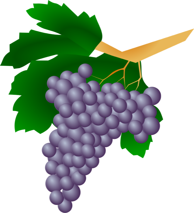 Wine grapes free clipart images.