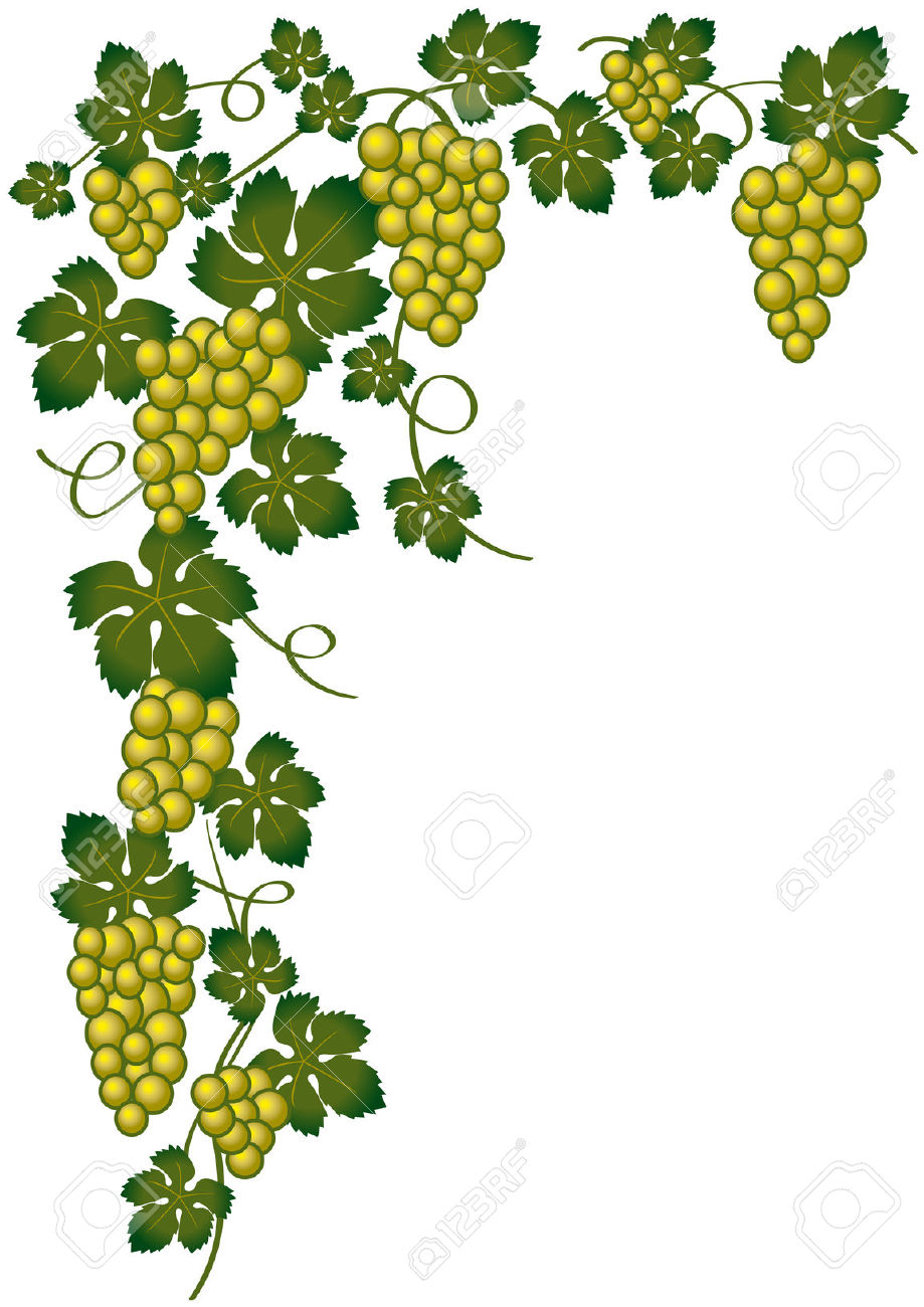 Green clipart borders for wine.