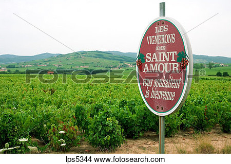 Wine growers clipart #17