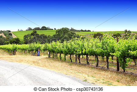 Stock Photos of McLaren Vale, Fleurieu Peninsula, South Australia.