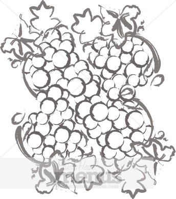 Grape Harvest Clipart.