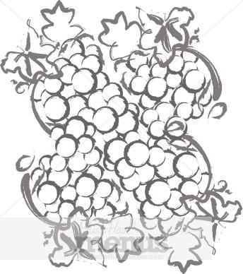 Grape Harvest Clipart.