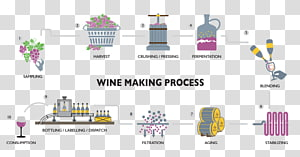 Winemaking transparent background PNG cliparts free download.