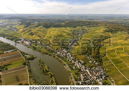 "Pictures of ""Aerial view, Moselle wine region, Moselle valley."