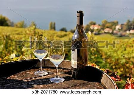 Stock Photography of wine tasting at Daley Estate in the Vineyard.