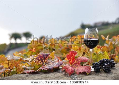Autumn Wine Stock Photos, Royalty.