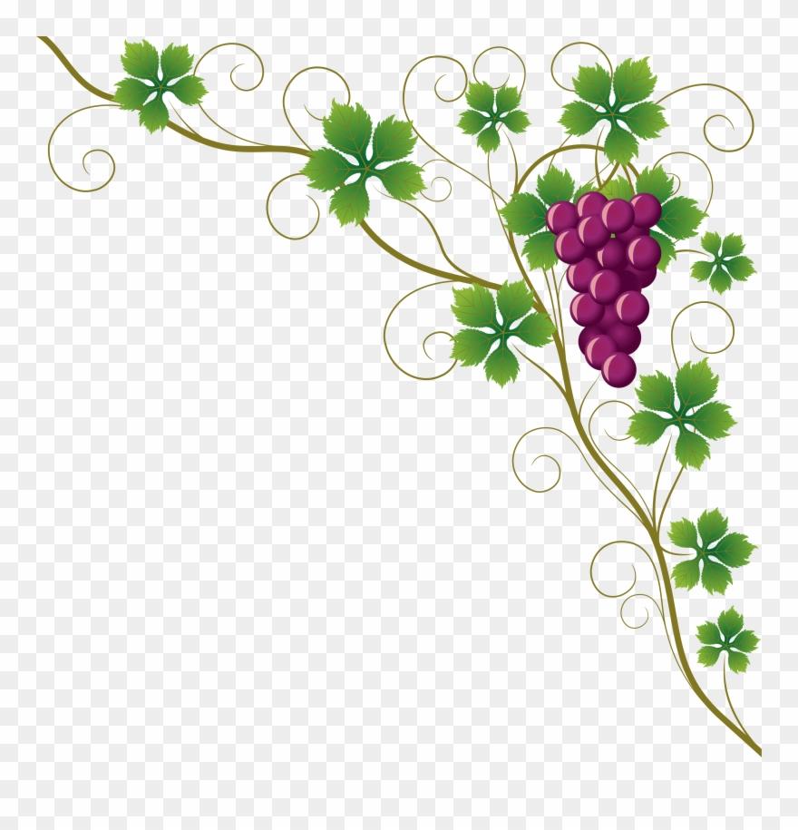 Common Grape Leaves Wine Clip Art Grapes.
