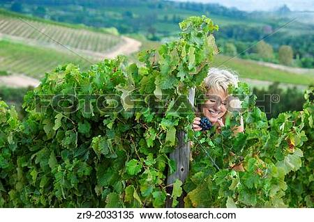 Stock Image of Woman sneaking grapes and laughing in a vineyard.