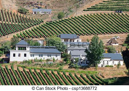 Picture of Cape Dutch style house in the Cape Wine.