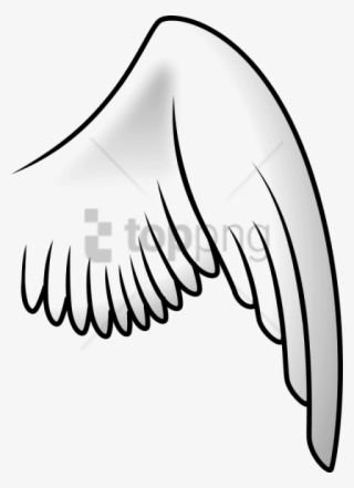 Bird Wings PNG Images.