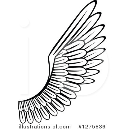 Wing Clipart #1275836.