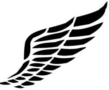 Wings design in vector format.