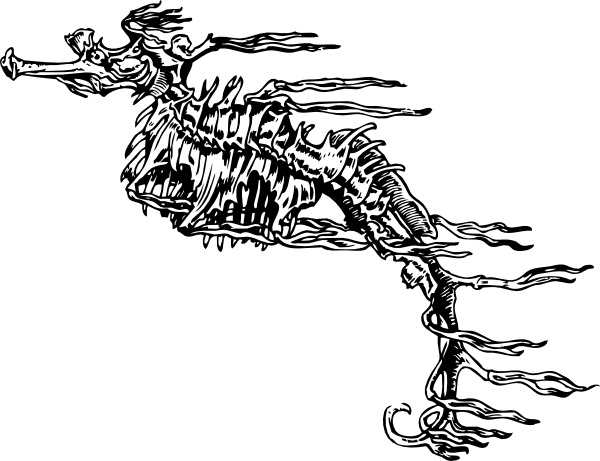 Vector skeleton for free download about (40) vector skeleton. sort.