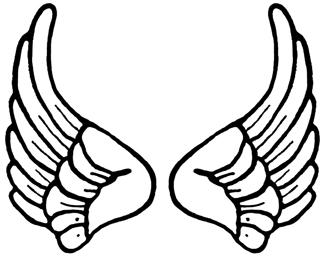 Cartoon Angel Wings.