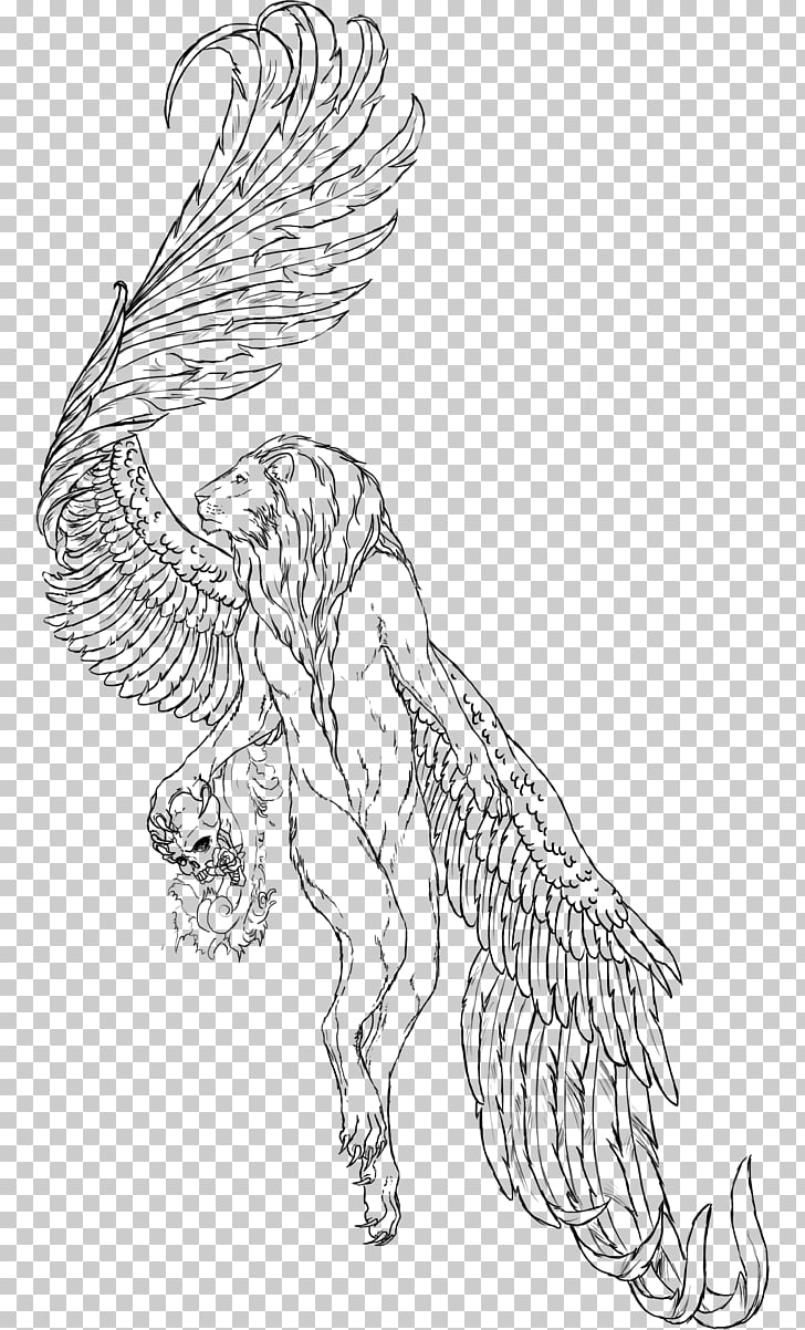Winged lion Drawing Sketch, Lion Wings PNG clipart.