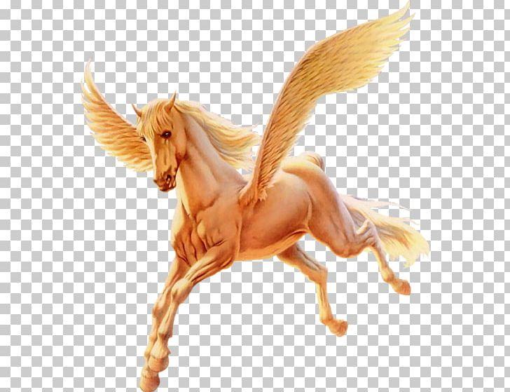 Mustang Pony Flying Horses Winged Unicorn Pegasus PNG.