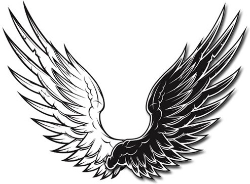 Black and white vector wings black and white vector wings Free.