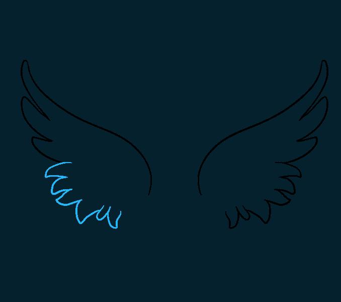 wing drawings.