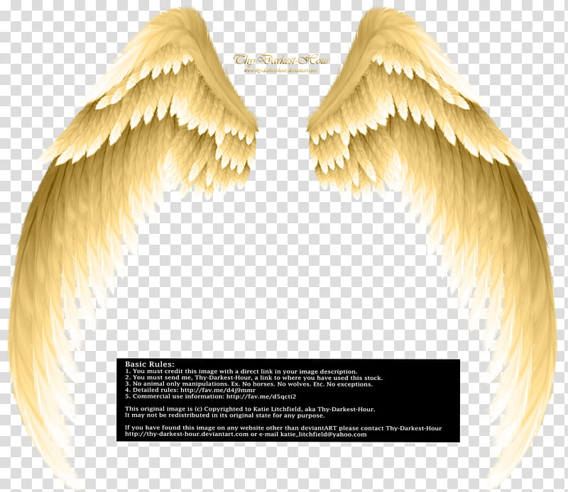 Arch Angel Wings Golden, golden wings art transparent.
