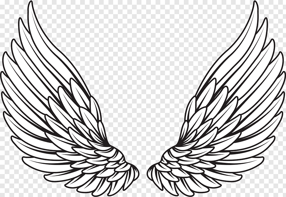 Pair of white wings illustration, Drawing, wings angel free.