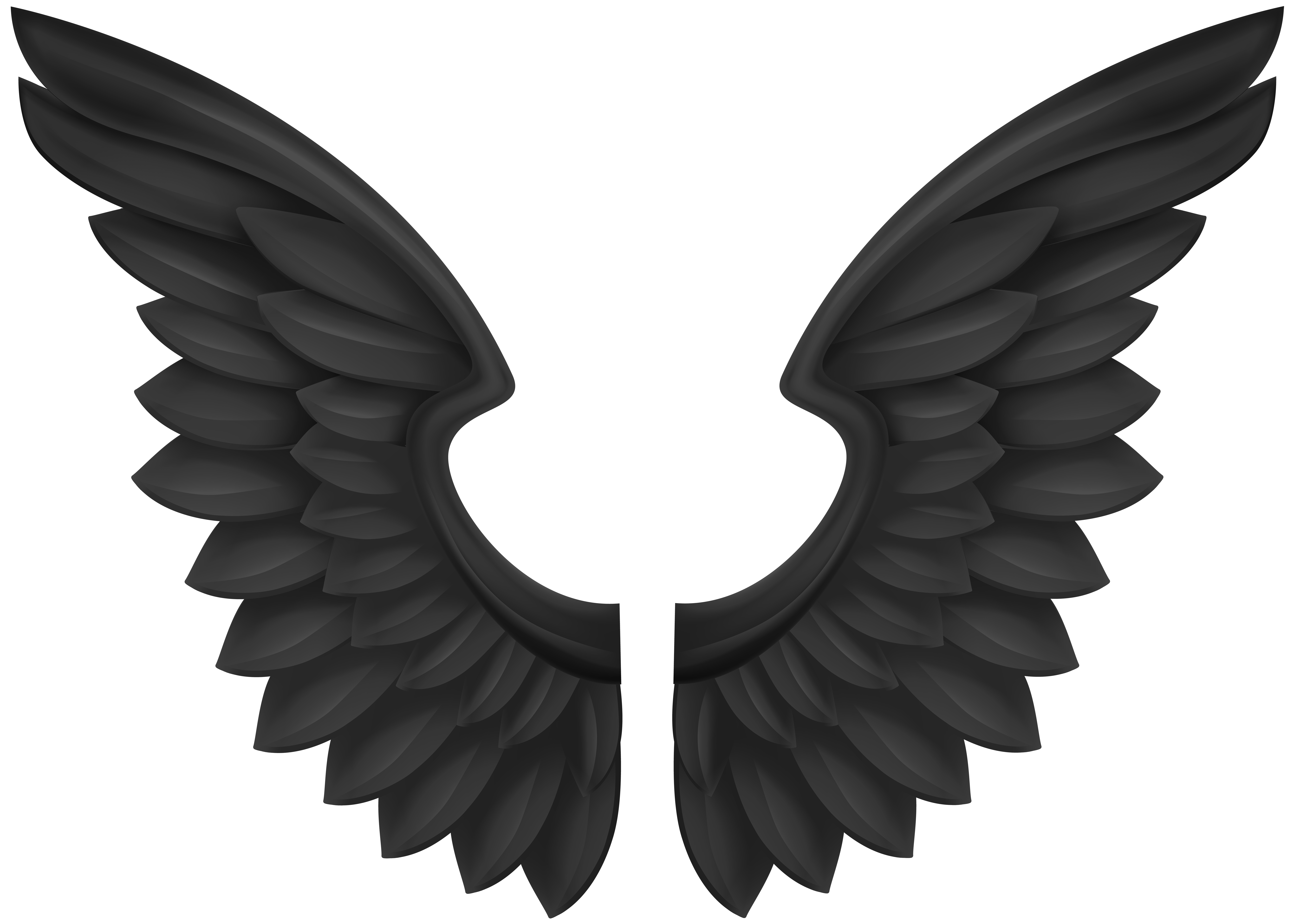 Wings Transparent Clipart.