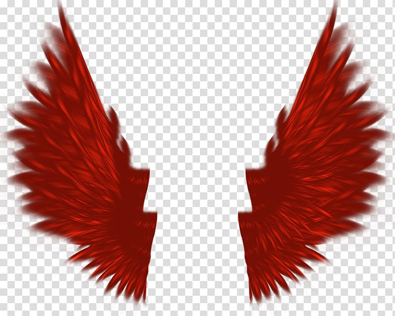 Red Icon, Red Wings transparent background PNG clipart.