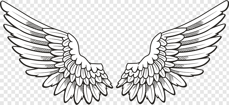Icon Wing, Wings, pair of feather wings artwork free png.