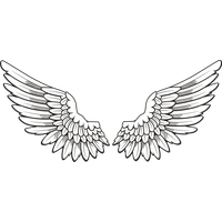 Download Wings Free PNG photo images and clipart.