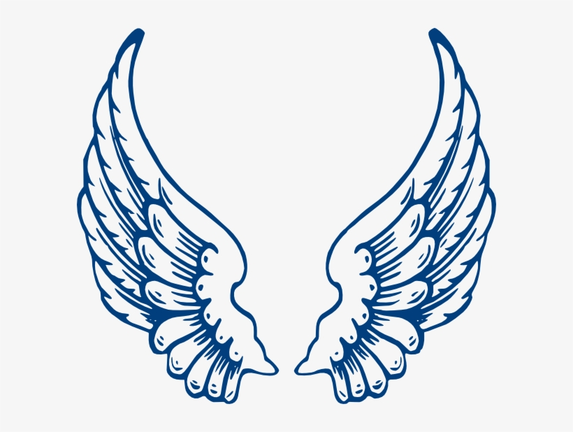 Angel Wings Vector PNG & Download Transparent Angel Wings Vector PNG.