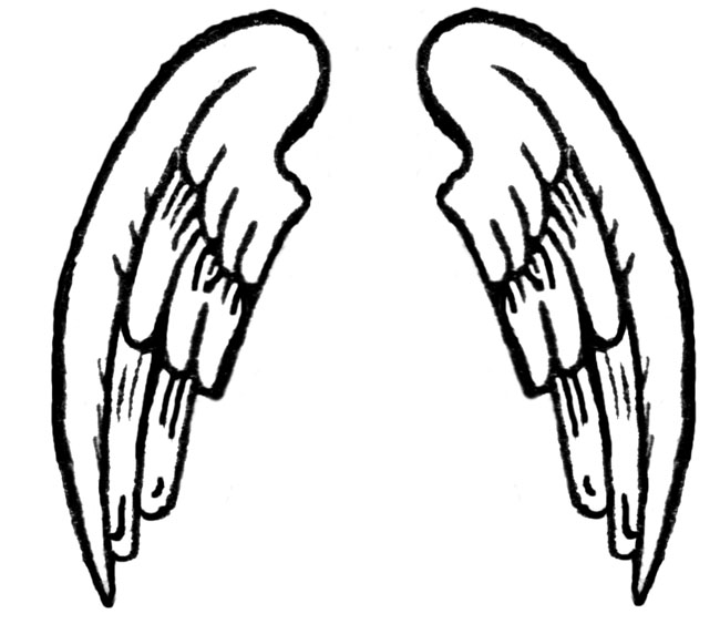 Angel wing Drawing Clip art.