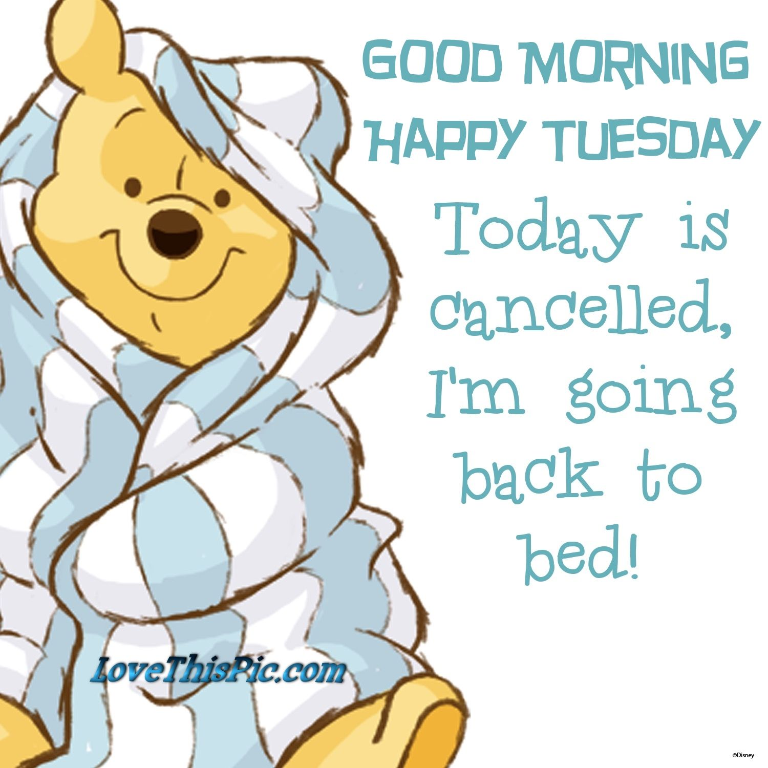 Good Morning Happy Tuesday Winnie The Pooh.