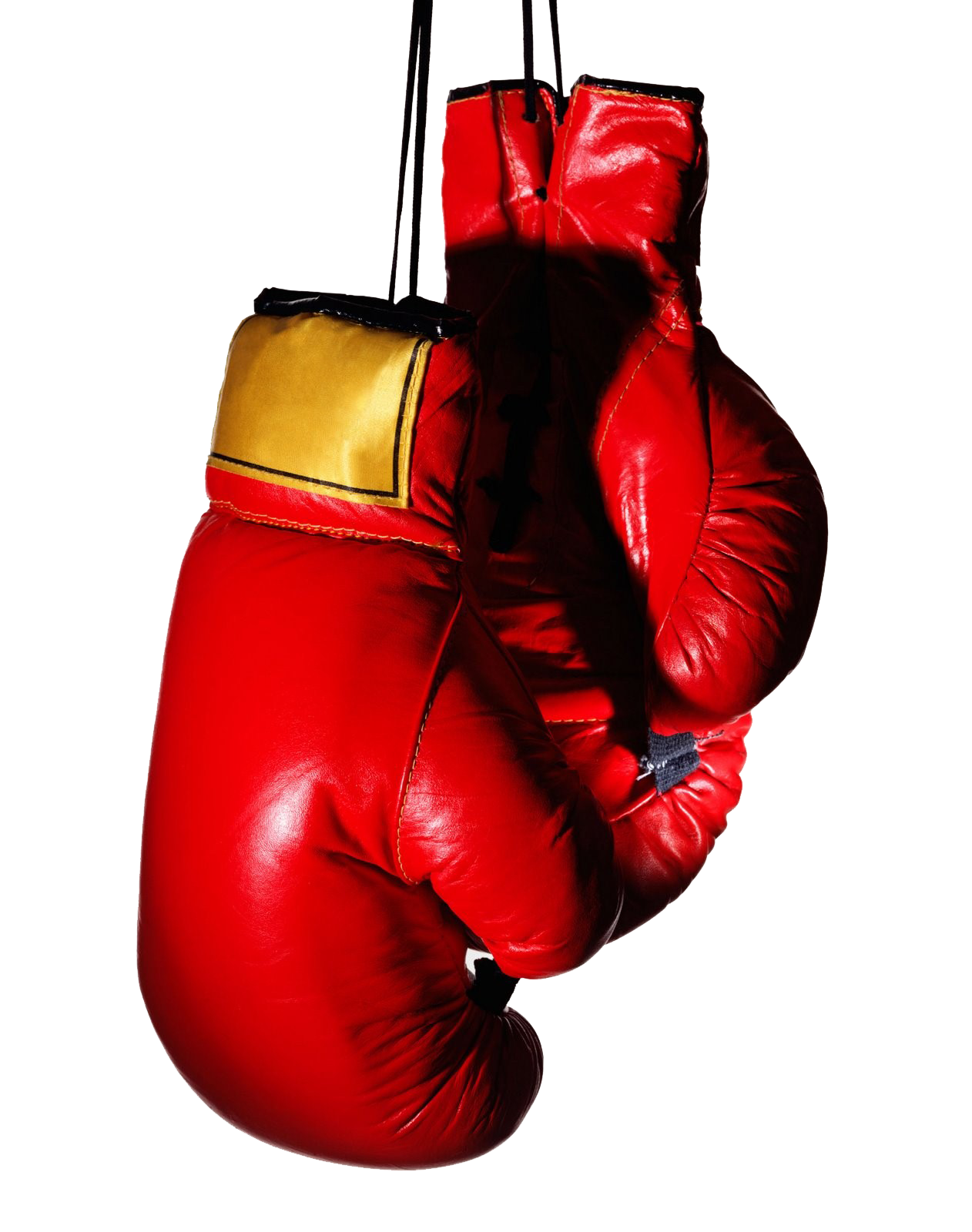 Boxing glove Stock photography Muay Thai.