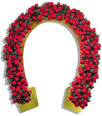 Garland of Roses Horseshoe.