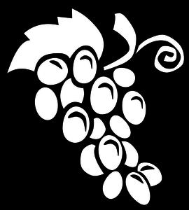 75 free grapes vectors.
